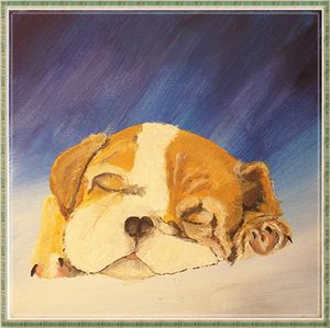 puppy dream_a.z.