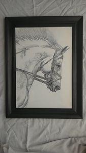 White horse Pencil work
