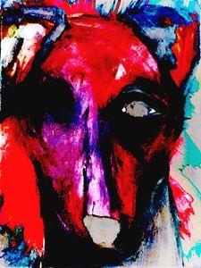 One Eyed Hound