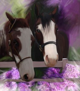 Two Horses And Purple Flowers