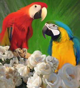 Two Parrots and White Roses