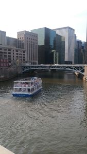 Chicago - Darrell