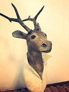Deer bust