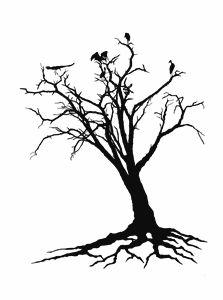 Bird Landing in Tree in Malawi