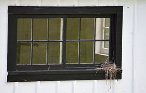 Window Nesting