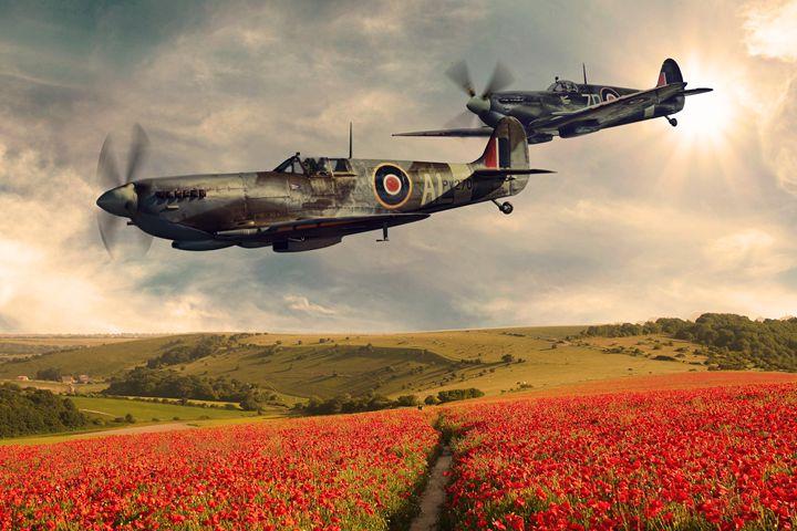 Spitfire over poppy field - psdigital art