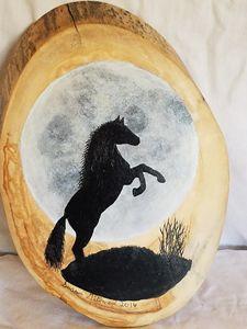 Stallion in moonlight