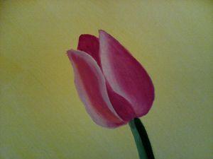 Lonely Pink Tulip Fantasy