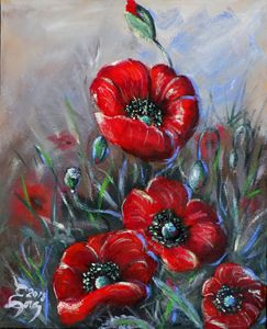 Five Poppies