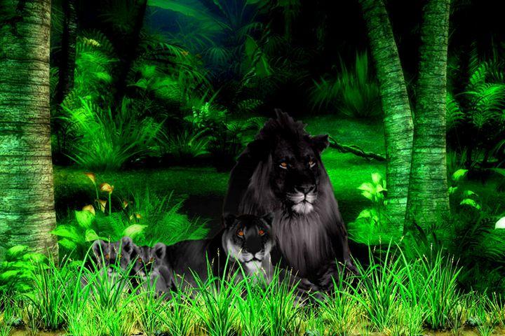 Black Lions - Art by Cheywings