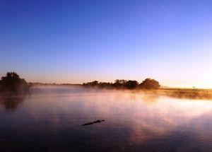 Crocodile sunrise