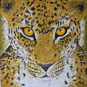 Leopard in jungle