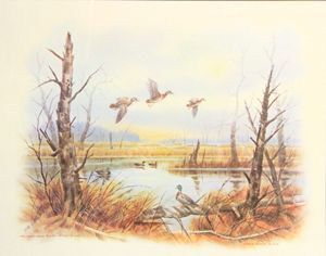 Mallards wood ducks, John E bradley