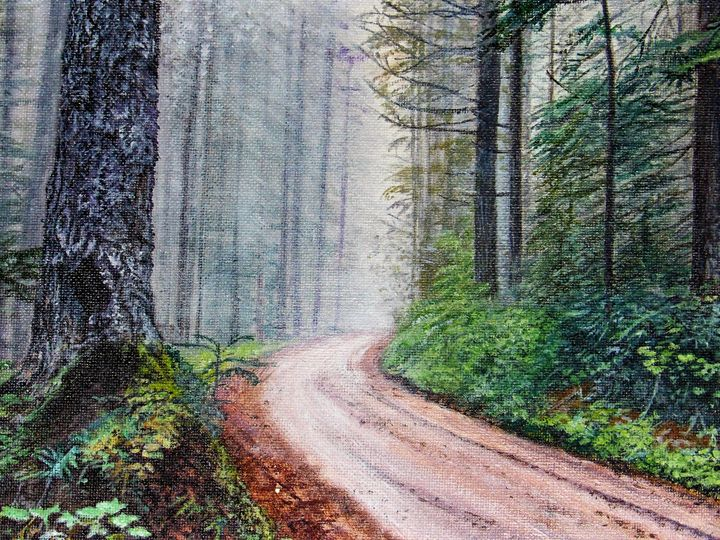 Foggy Forest Road - Lori