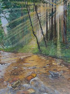 Sunlit Creek