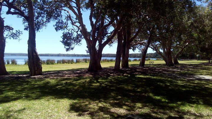 Budgewoi park. - Art philosophy