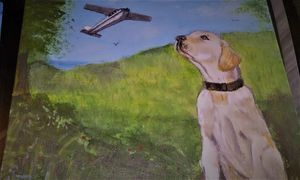 Dogs that can fly planes - DavesArtbiz