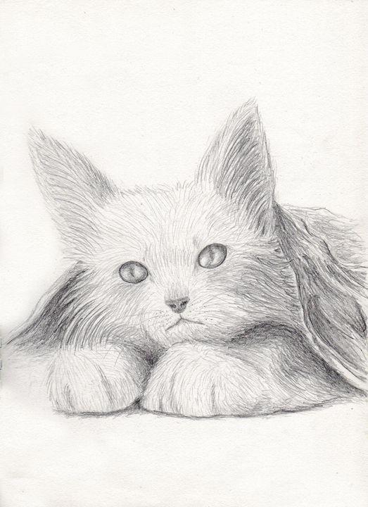 Cat Portrait - JK Art Life