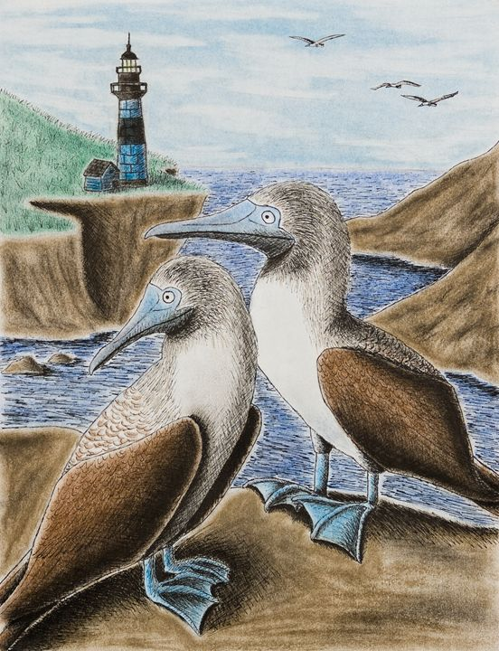 Blue-footed Booby - JK Art Life