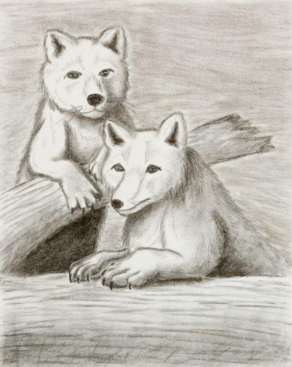 Arctic Fox - JK Art Life
