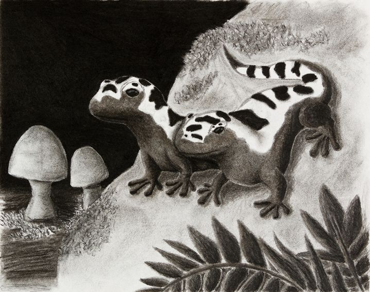 Marbled Salamanders On Rock - JK Art Life