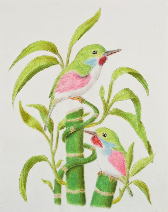 Cuban Tody on Bamboo Tree - JK Art Life