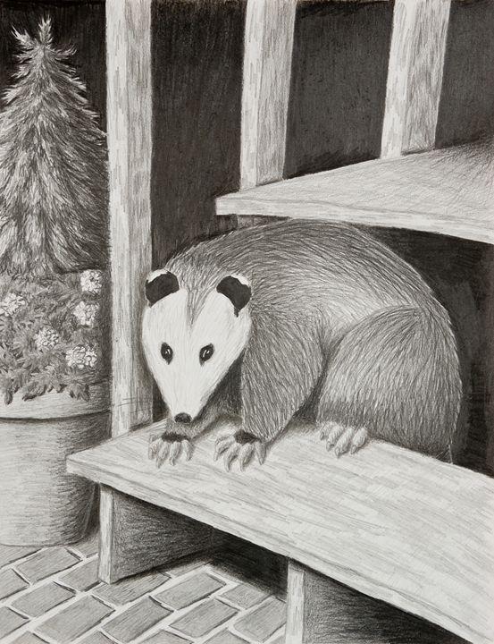 Possum - JK Art Life