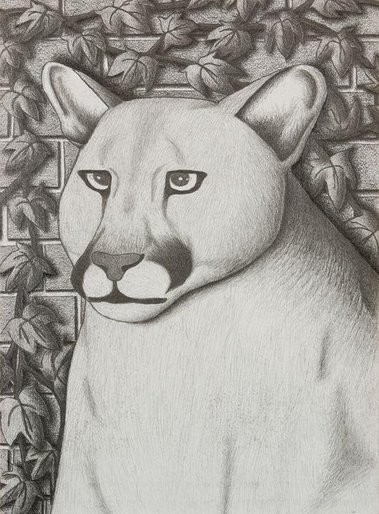 Cougar - JK Art Life