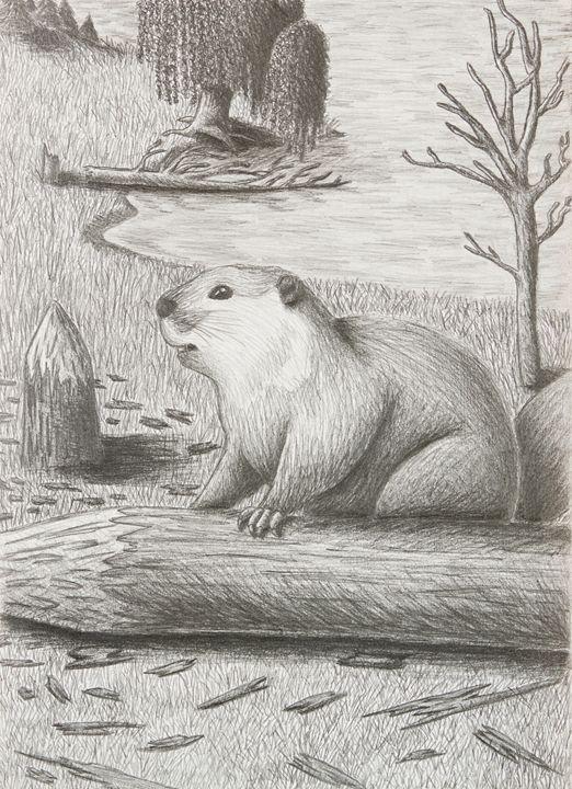 Beaver - JK Art Life