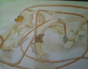 Bones and Electric Cable