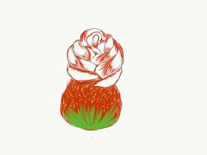 Rose Strawberry