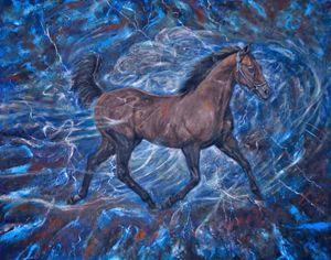 Stallion run