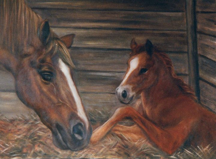 Thoroughbred mare and newborn foal - Terry Sita