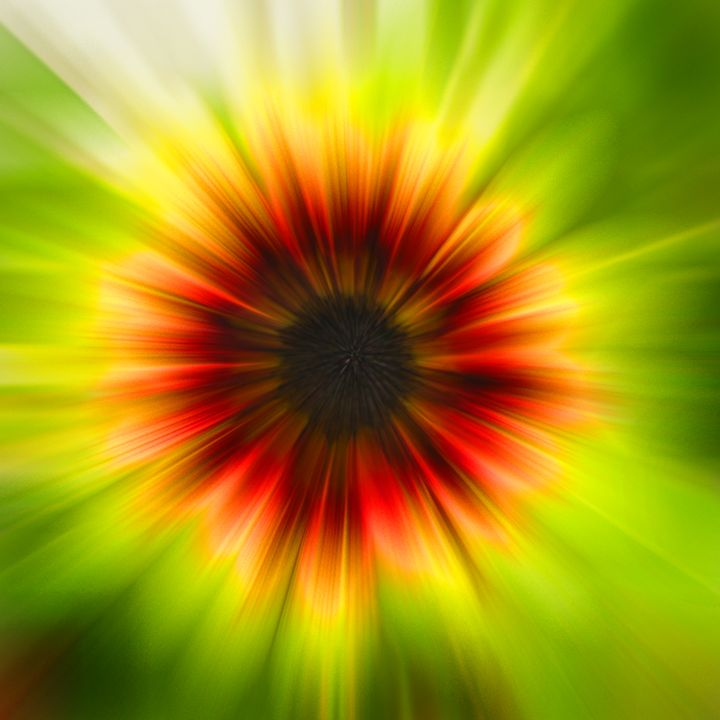 Natures Black Hole in a Sunny - Larry West Art