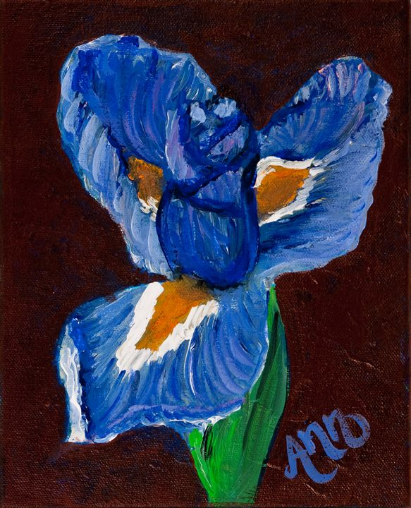 Blue Iris - Decorative Impressions by Ann Lutz