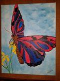 NY Butterfly