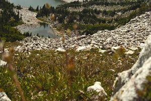 Snowy Range 1
