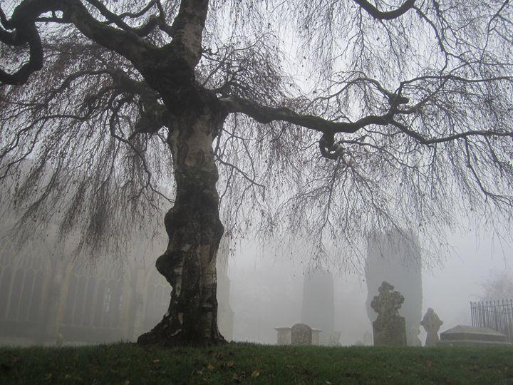 Misty Afternoon - Kate Bartholomew