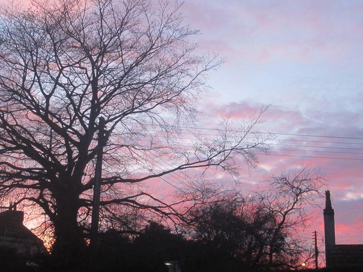 Sunset Silhouette - Kate Bartholomew