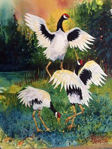 Dances with Cranes
