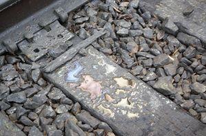 Oily Tracks