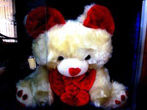 Love- TEDDY
