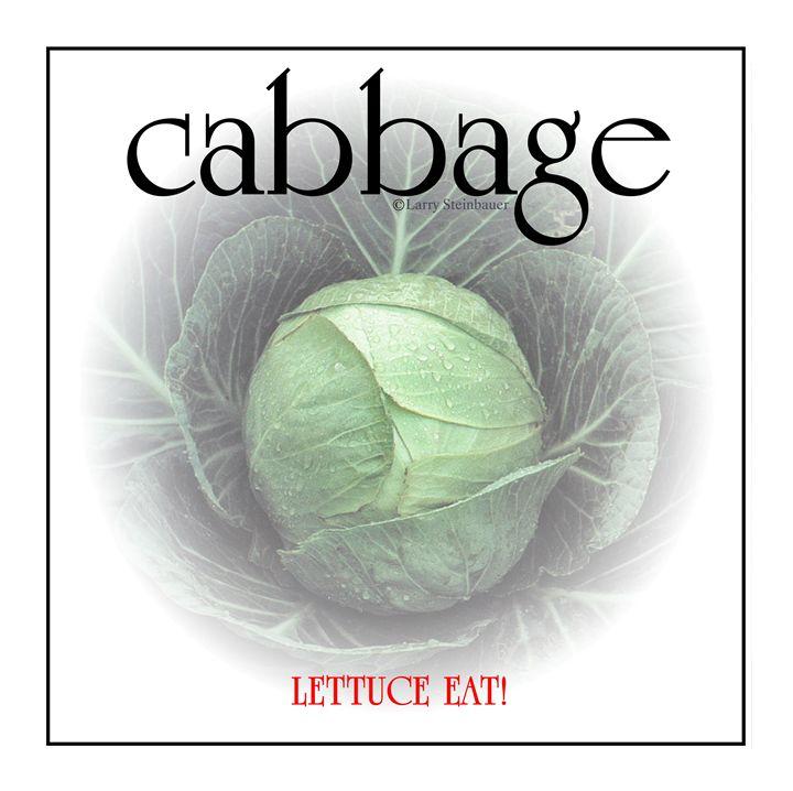 CABBAGE - LARRY STEINBAUER