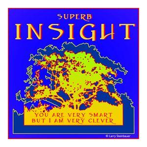 SUPERB INSIGHT