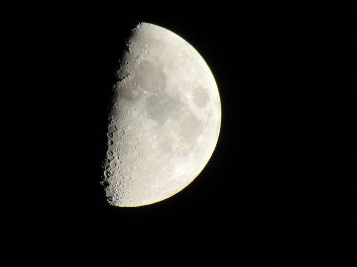 Half Moon - Annise Cibrian Photography