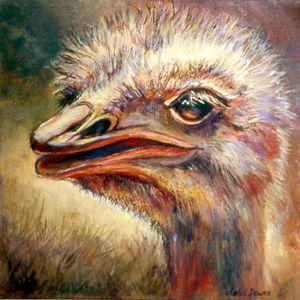 Emu Love - Judy Downs