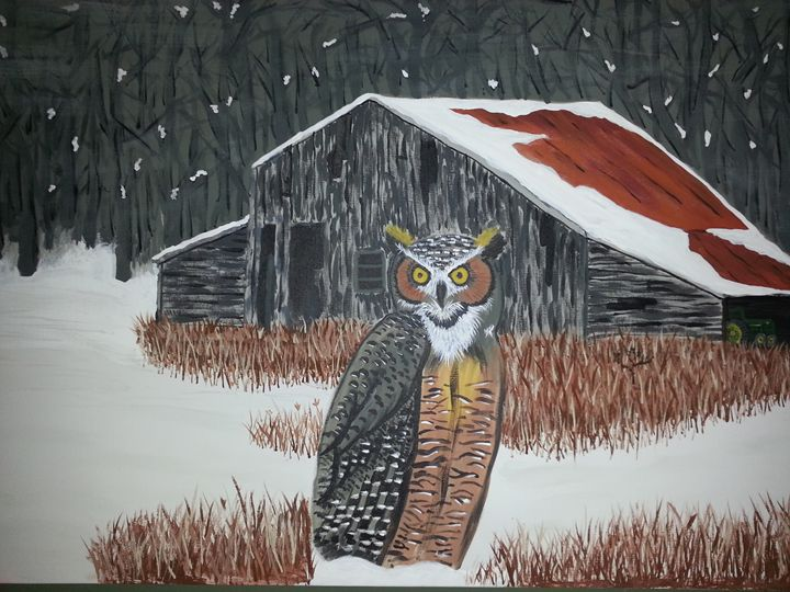 Southern owl - John willis