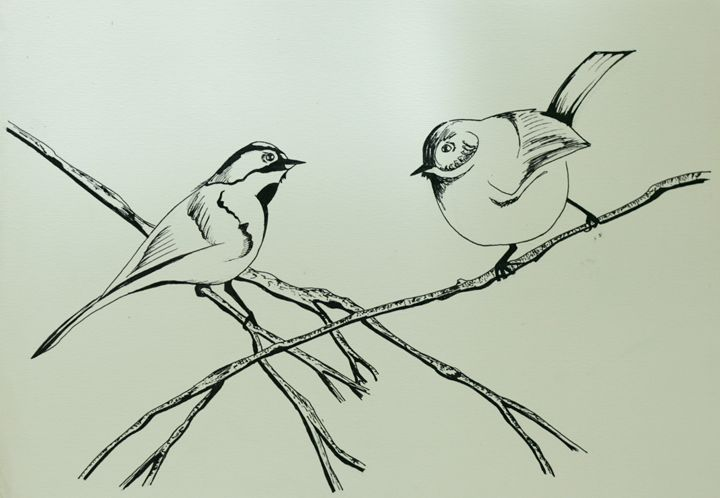 Pen and Ink Birds - AmarisMorn Art
