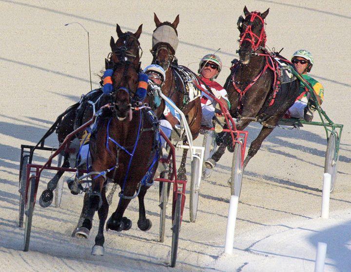 Harness Racing #10 - Larry Singer Fine Art Photography
