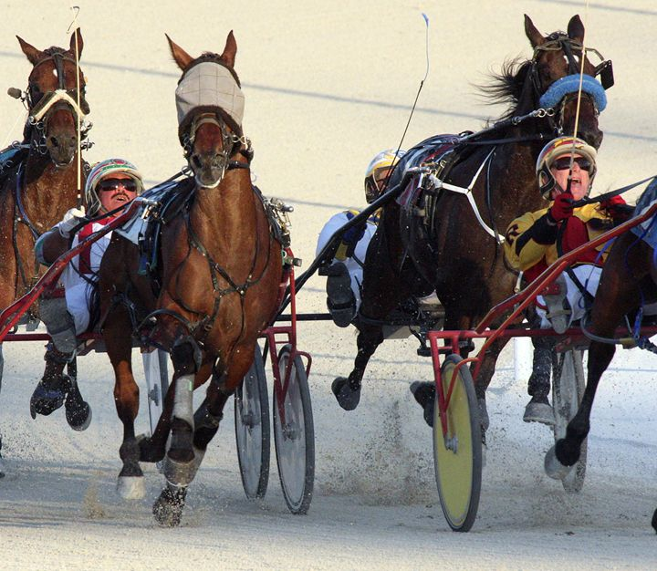 Harness Racing #8 - Larry Singer Fine Art Photography